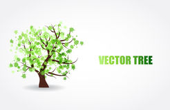 Abstract tree with green fresh leaves Royalty Free Stock Photos