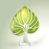Abstract tree with green leaf Royalty Free Stock Photos