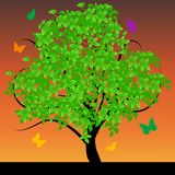 Abstract tree with green leafs Royalty Free Stock Images