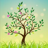 Abstract tree with green leaves, flowers on a colorful and sunny background. Vector drawing royalty free illustration