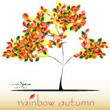 Abstract tree in green-red-yellow foliage at fall. Golden autumn Royalty Free Stock Photo