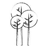 Abstract tree icon image. Vector illustration design Stock Photo