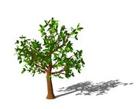 Abstract tree. Isolated on white background. 3D rendering illustration.  Royalty Free Stock Image