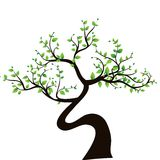 Abstract tree, symbol of nature Stock Image