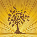 Abstract tree  whit rays. Royalty Free Stock Images