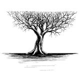 Abstract Tree. Tree on a white background, illustration, hand draw Royalty Free Stock Image