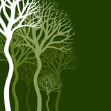Abstract tree4. Wood of trees on a green background. A vector illustration Stock Photos