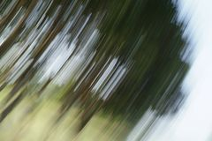 Abstract trees. And field, natural motion blur Stock Photos