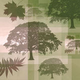 Abstract Trees and Leaves. Abstract composite grunge of faded rowan, maple leaves and oak trees contained within lines and rectangles in various neutral tones of royalty free illustration