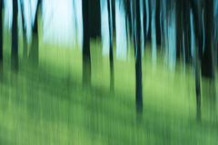 Abstract of trees and sky with blur Stock Images