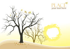 Abstract Trees and Sun Background Royalty Free Stock Images