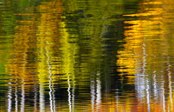 Abstract Trees Water Reflection Stock Photo