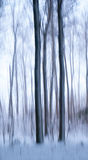 Abstract trees in winter Stock Photo
