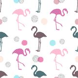 Abstract trendy seamless vector pattern with flamingo. And circles Stock Image