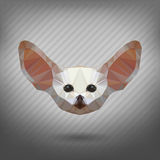 Abstract triangle polygonal animal fennec. Abstract triangle polygonal animal in the style of origami fennec Stock Photos