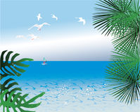 Abstract tropical backgrounds royalty free illustration