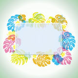 Abstract tropical frame Stock Photography