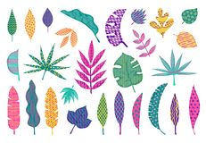 Abstract tropical leaves. Leaf summer tribal elements, trendy abstract palm leaves, modern floral design elements royalty free illustration