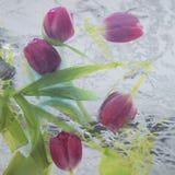 Abstract tulpenboeket Stock Afbeelding