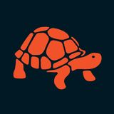 Abstract turtle Royalty Free Stock Image