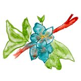 Abstract twig leaf blue floral watercolor flower. Paintings hand isolated Stock Images