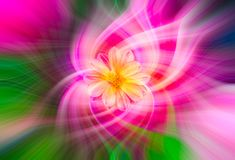 Abstract twirl effect background with flower. Colorful abstract twirl effect background with flower stock images