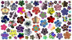 Luxurious set of beautiful flowers for your design. Abstract unique illustration and decoration. Oil paint effect. Many flowers different colors on a white Stock Image