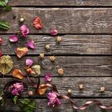 Abstract vakantiekader met roze bloemblaadjes Stock Afbeeldingen