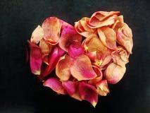 Abstract valentijnskaarthart van Rose Rose-bloemblaadjes met geweven achtergrond stock foto's