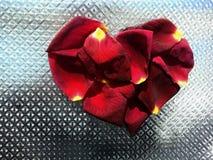 Rose petals heart stock images