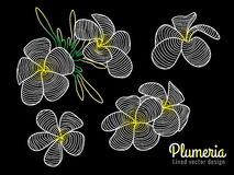 Abstract vector art lined design (white yellow Plumeria flower) Stock Image