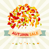 Abstract Vector Autumn Sale Illustration. With Leaves on Retro Background Royalty Free Stock Photography