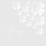 Abstract vector background with paper flowers. Abstract spring white and gray vector background with paper flowers. EPS10 illustration Stock Photo