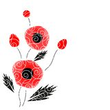 Abstract vector background with a poppies. Abstract vector poppies isolated on a white background Stock Photo