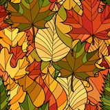 Vector doodle autumn leaves seamless pattern. Abstract vector doodle autumn leaves seamless pattern Royalty Free Stock Image