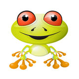 Abstract Vector Frog Illustration Royalty Free Stock Photo