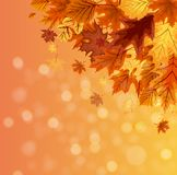 Abstract Vector Illustration Autumn Happy Thanksgiving Background with Falling Autumn Leaves. EPS10 Stock Photos