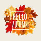 Abstract Vector Illustration Background with Falling Autumn Leav Stock Photos