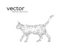 Abstract vector illustration of cat. On white background Stock Photos
