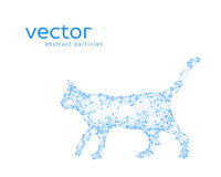 Abstract vector illustration of cat. On white background Royalty Free Stock Image