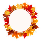 Abstract Vector Illustration Frame Background with Falling Autum Royalty Free Stock Image