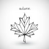 Abstract vector Illustration. Hand drawn autumn Royalty Free Stock Photos