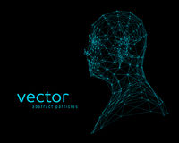 Abstract vector illustration of human head Royalty Free Stock Image