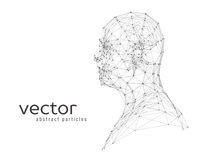 Abstract vector illustration of human head Stock Photography