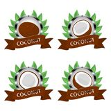 Abstract vector illustration logo for whole ripe fruit white coconut. Slice half nut on background. Nut Coconut pattern consisting of label natural coco milk royalty free illustration