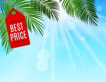 Abstract Vector Illustration Summer Sale Background Royalty Free Stock Photography