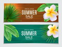 Abstract Vector Illustration Summer Sale Background Royalty Free Stock Photo