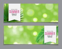 Abstract Vector Illustration Summer Sale Background Stock Images
