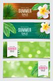 Abstract Vector Illustration Summer Sale Card Set  Background. EPS10 Stock Photography