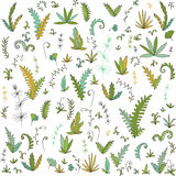 Abstract vector leaves and plants. Abstract vector fern leaves, bushes and plants, cartoon wild herbs, hand drawn vector elements Royalty Free Stock Image